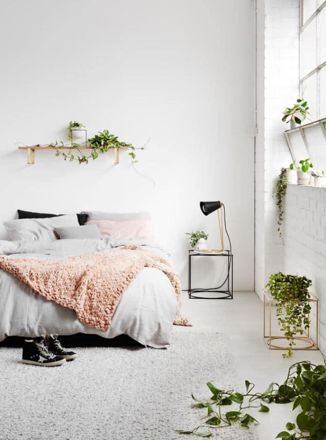 planted minimalist bedroom
